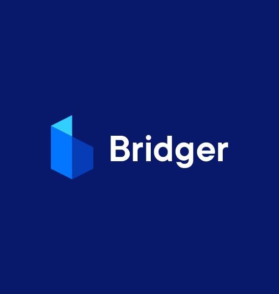 Bridger Digital Solutions
