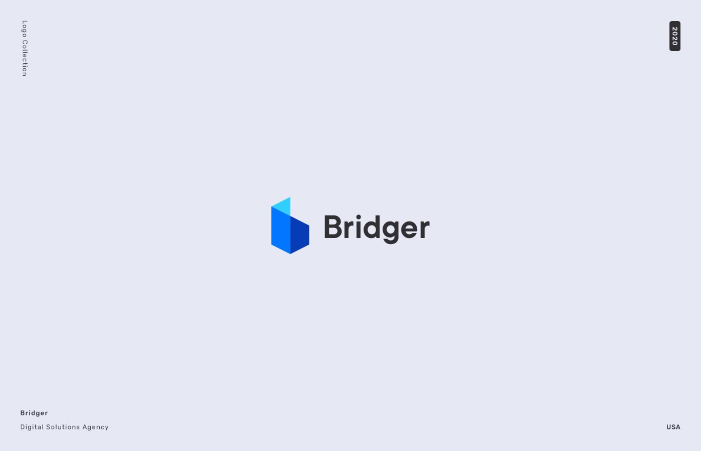 noyan-ozun-logo-bridger